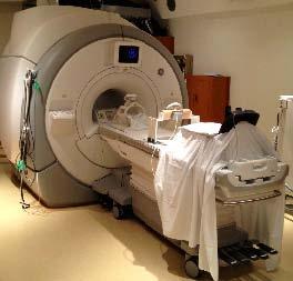 Figure 2: fMRI and driving setup